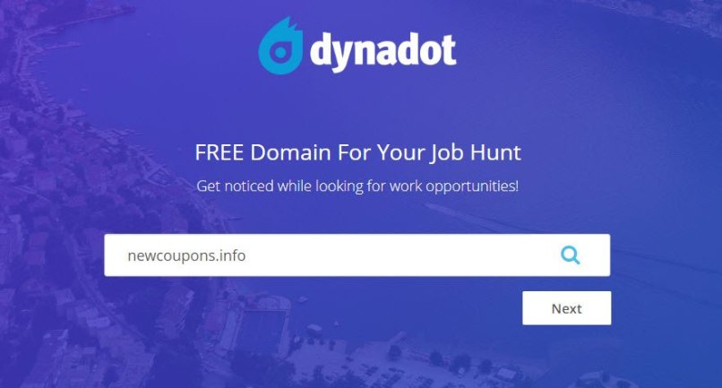 Super Hot! Get One Domain For Free At DynaDot