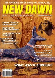 New Dawn 112