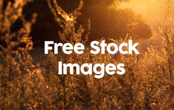 Free stock photography stock photo File Page 13 ...