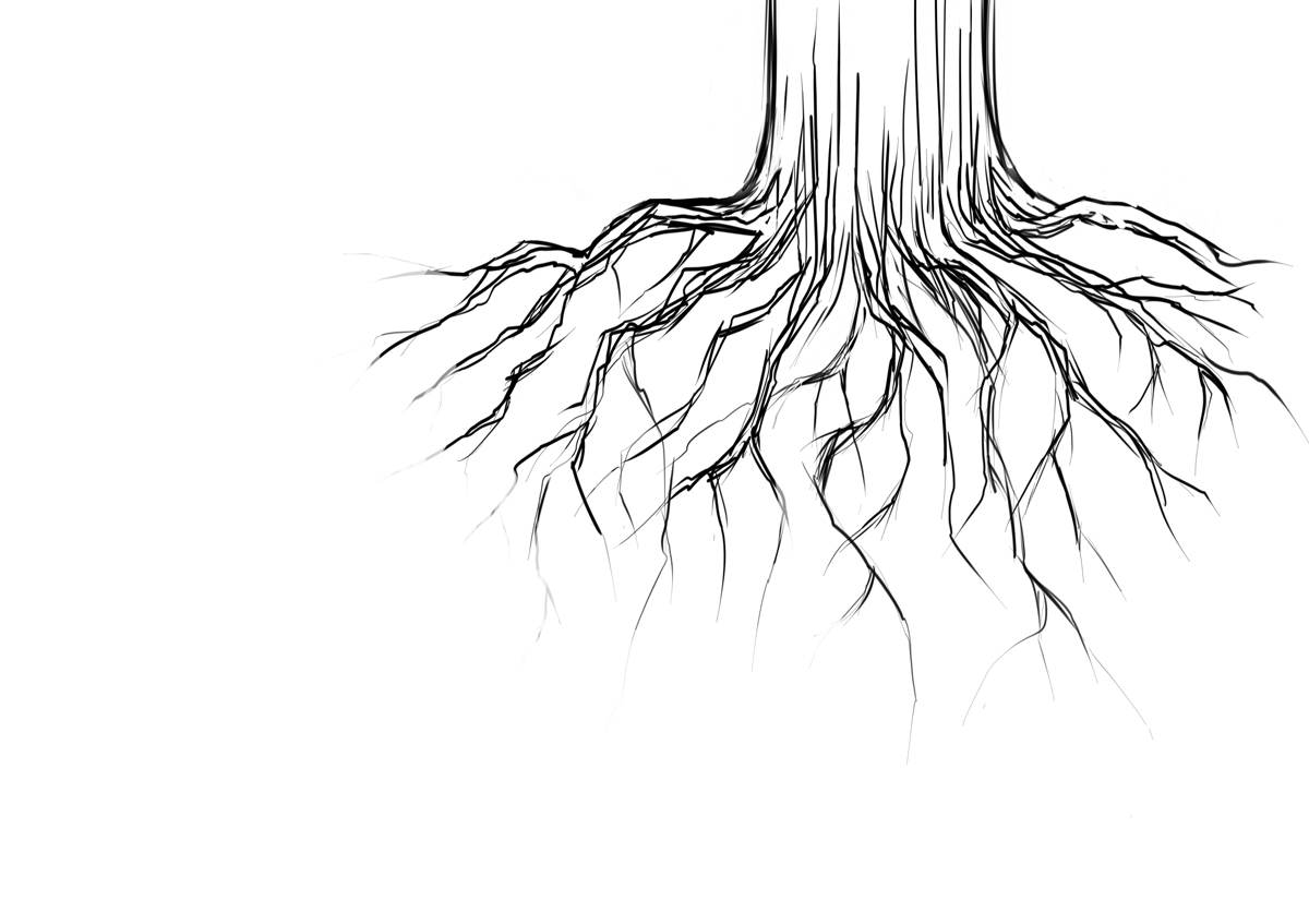 Tree Roots Sketch Pictures To Pin