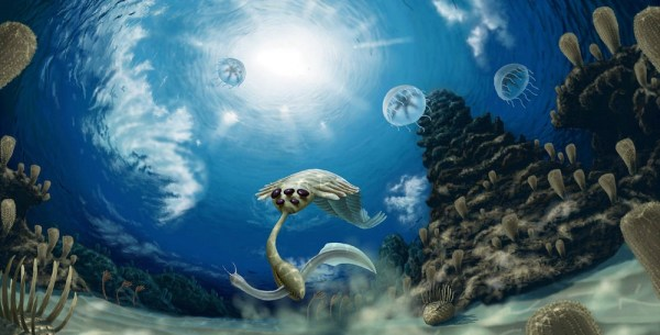 The Paleozoic Era Facts and Pictures