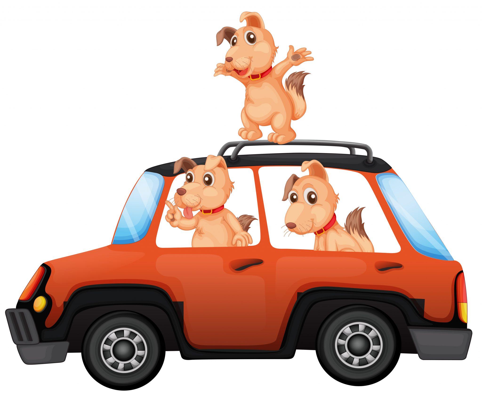 Car Travel with a Dog - 3 cartoon dogs in a car