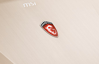 MSI GS Series GS60 Ghost-444 Gaming Laptop