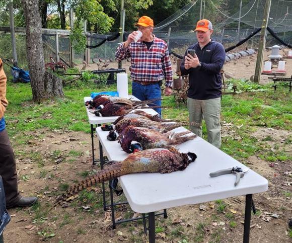 New England Adventures Veteran Pheasant Hunt