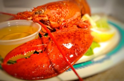 Lobstah_Claw