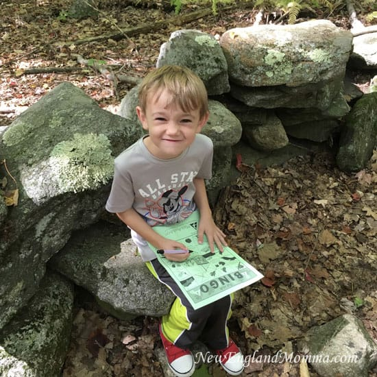 Massachusetts Audubon has a free printable for seasonal scavenger hunts