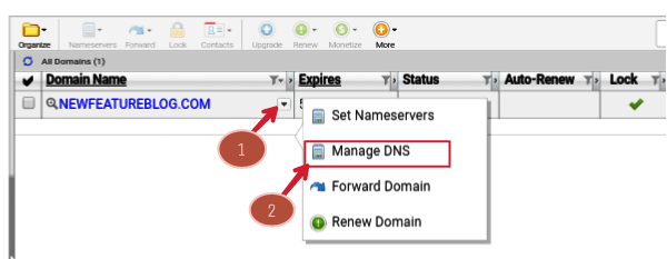 click-on-manage-dns-of-domain-drop-down-menu