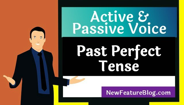 active passive voice past perfect tense excercise