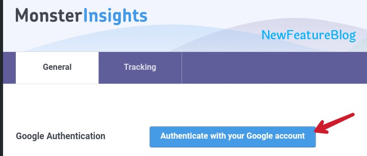 authenticate monsteInsights with google account