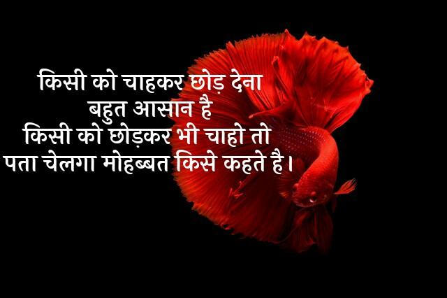 love and dard painful shayari in hindi