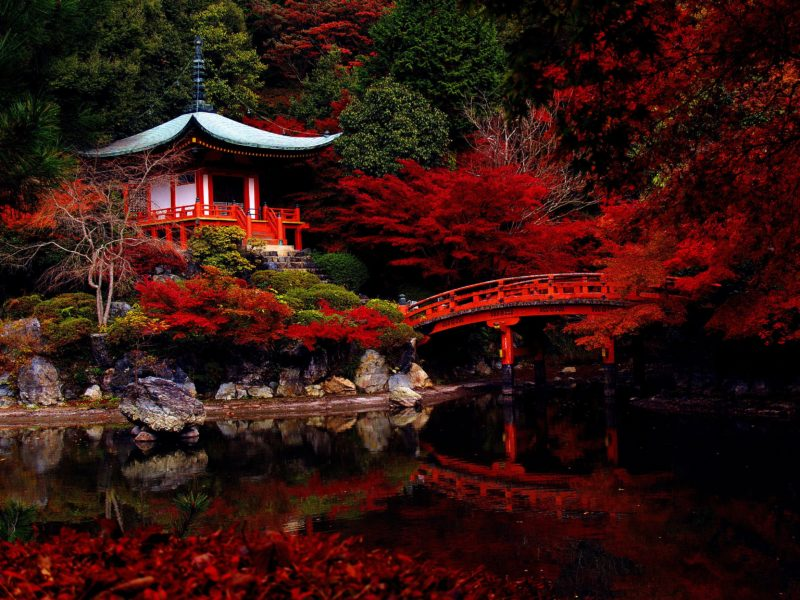 autumn_japanese_garden-1573435