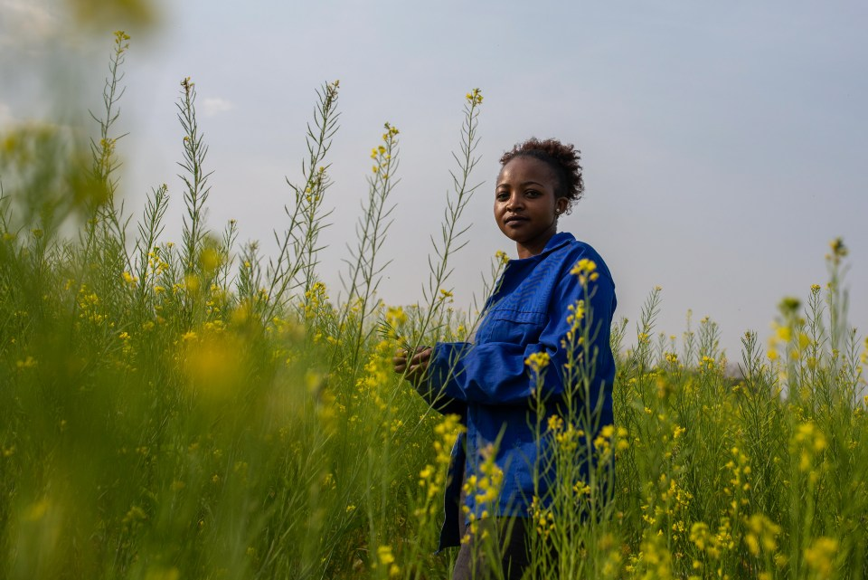 6 September 2018: 27-year-old Dineo Boshomane standing in a field of some of the Chinese spinach which she grows on her one-hectare farm in Northern Farm, Diepsloot.