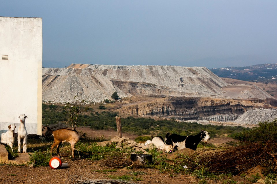 4 May 2017: Goats forage next to an abandoned homestead against a backdrop of massive coal mining dumps. (Photograph by Rob Symons)