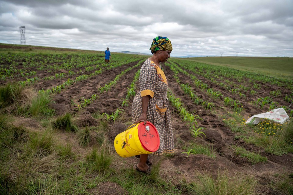 16 January 2019: Thandi Mazibuko making her way to an old borehole. Along with other residents, she has not had access to clean water since the beginning of the year.