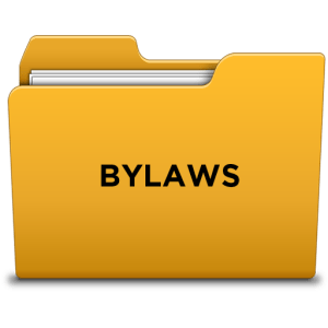 bylaws_icon