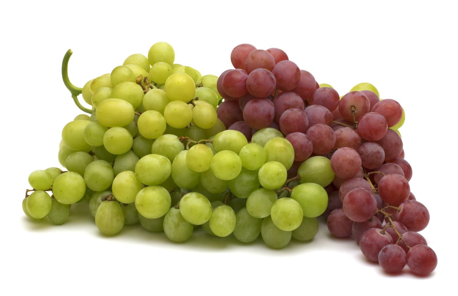 Top 12 Fruits For Hair Growth New Health Advisor