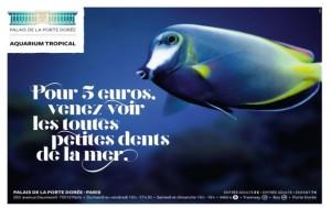 Aquarium tropical Porte Doree
