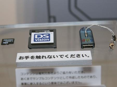 dsvision2.jpg