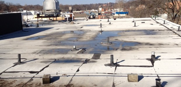 Wednesday at the Overland Administrative Building the roof and roof drains were cleaned to honor our warranty conditions with the roofing company that installed our new roof two years ago. Charlie has done a great job cleaning and sweeping nearly […]
