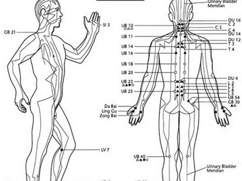 acupuncture-points-New-Life-graphic | New Life Foundation