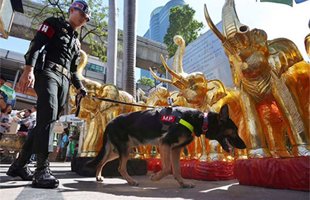 A military police leads a detection dog around Erawan Shrine. Photo by Straits Times/ NEO XIAOBIN.