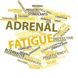 Adrenal Fatigue. Adrenal Failure.