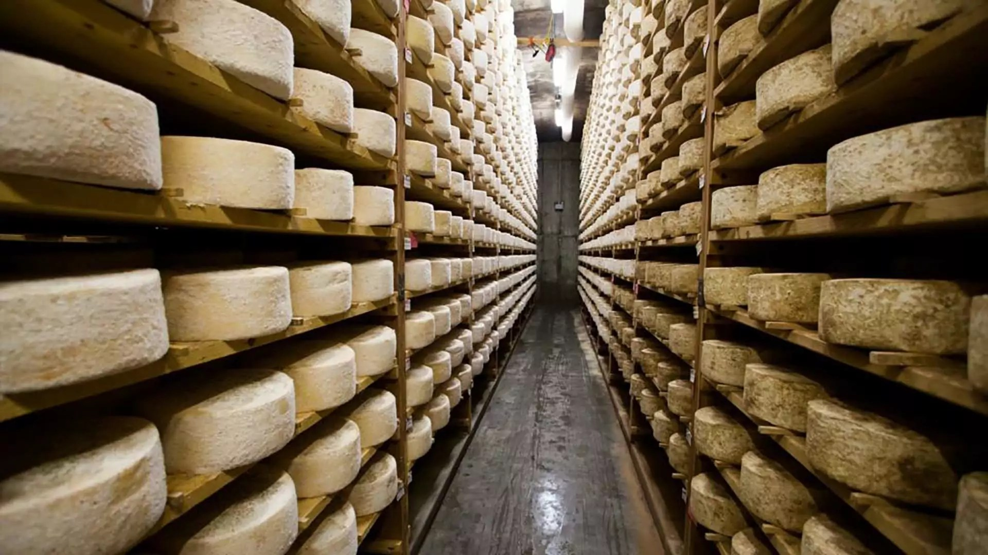 A warehouse filled with cheese.