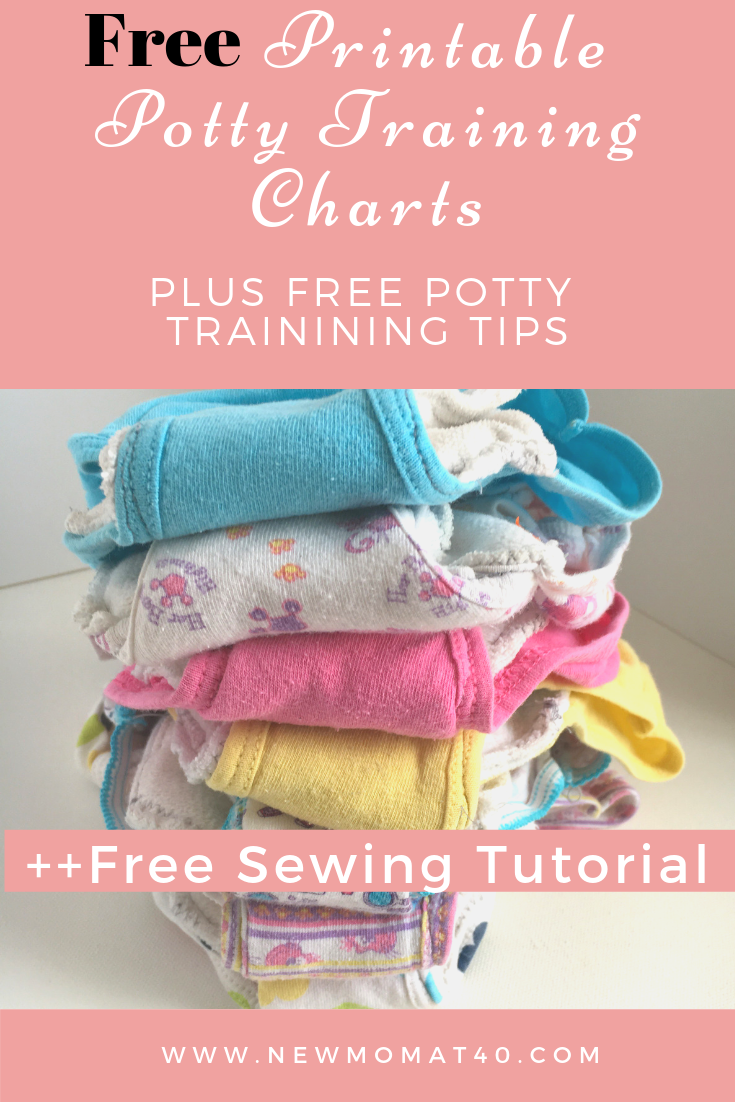 image relating to Free Printable Potty Chart identified as Potty Exercising Panties Do-it-yourself and Totally free Potty Performing exercises Charts