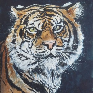 Tiger Tiger Susan McLaren New Moon Network