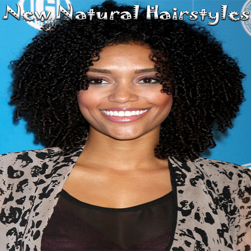 Strange 18 Natural Bob Hairstyles With Curly Hair For Black Women New Hairstyles For Men Maxibearus
