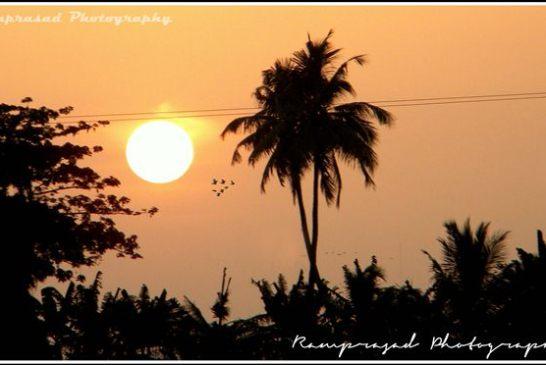 Govindpur Village 5
