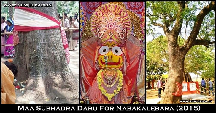 Subhadra Daru for Nabakalebara 2015