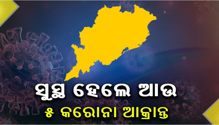 5 more COVID positive cases from different dists of Odisha recovered