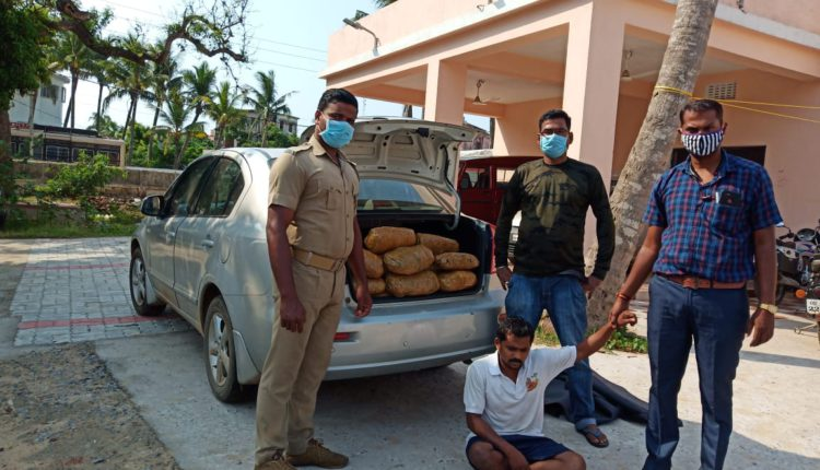 44 kg Ganja seized in Odisha's Puri amid lockdown, One Arrested