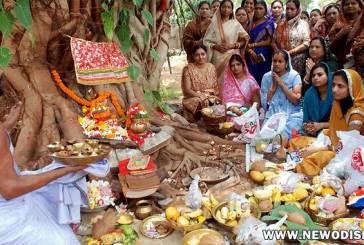Sabitri Brata 2020 in Odisha Date, Savitri Amabasya Puja