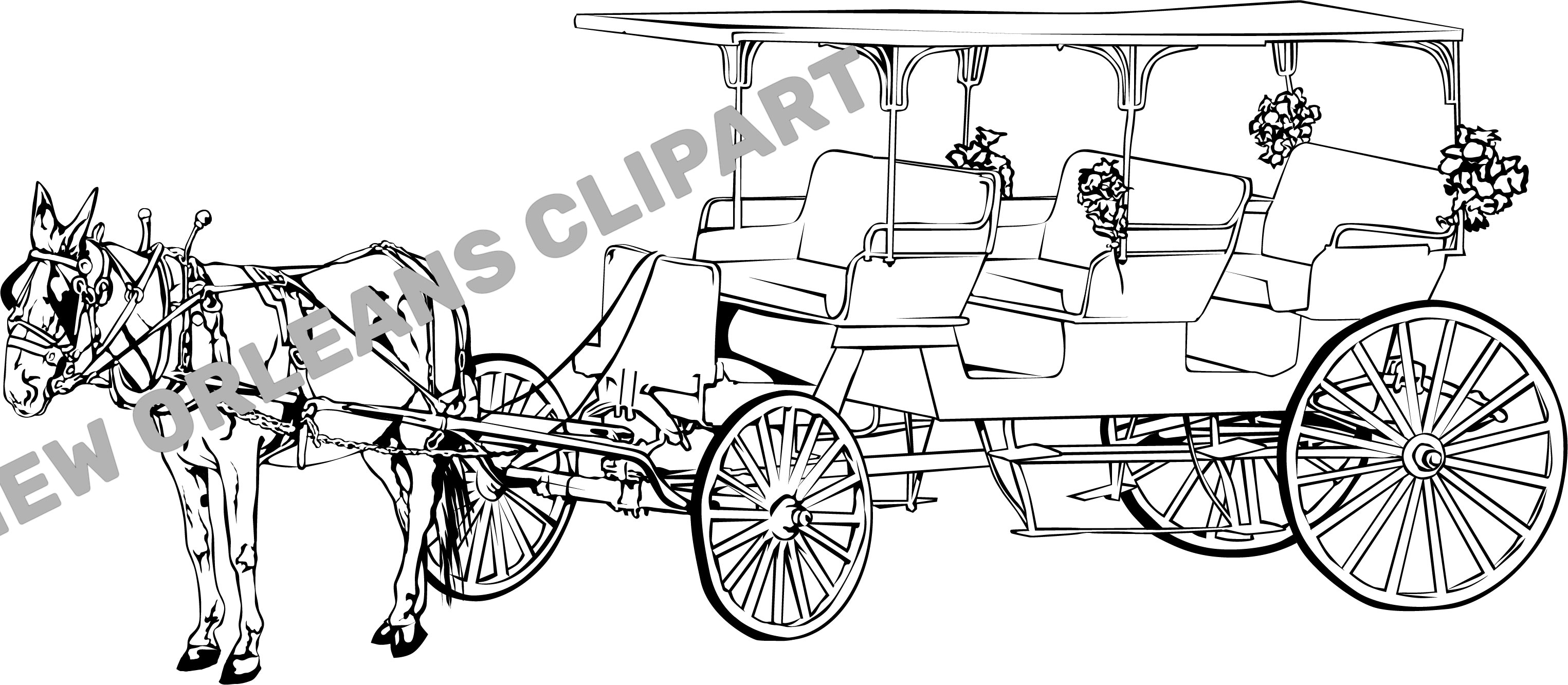 New Orleans Horse Drawn Carriage