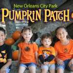 Wheel Fun Rentals is Hosting a Pumpkin Patch at City Park!
