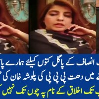Video: Palwasha Khan of PPP Uses Bad Language about PTI Supporters