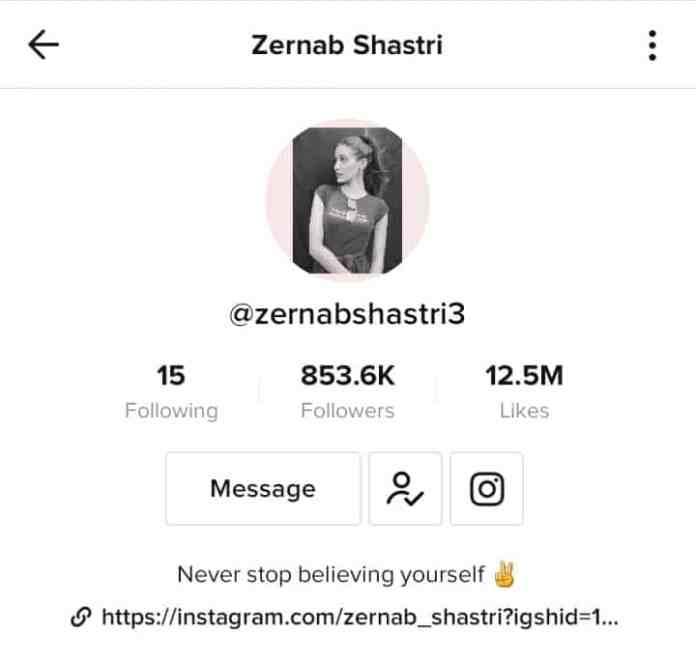 Zernab Shastri TikTok profile
