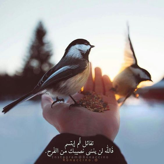 صور خلفيات واتس اب دينية إسلامية فوتوجرافر