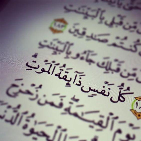-ايات-من-كتابة-الله-الكريم-3