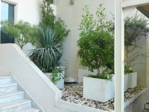 Fresh Air Stairway 300x225 25 Beautiful Indoor Plant Design Images