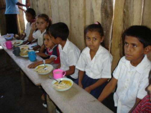 Feeding Center 2