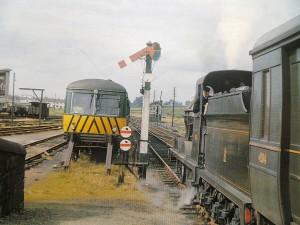 TrainAtMeadow-300x225.jpg