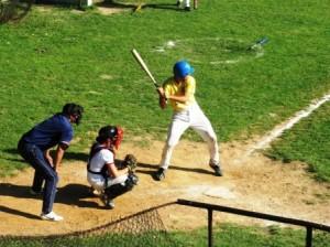 baseball 29052