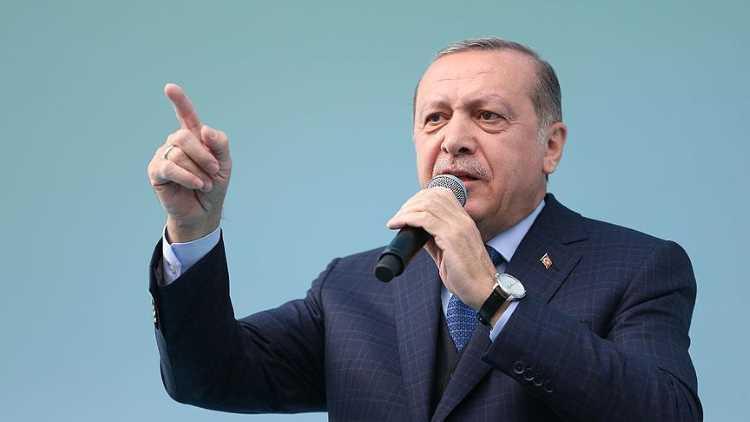 Эрдоган: «Образование за рубежом разрушает Турцию»
