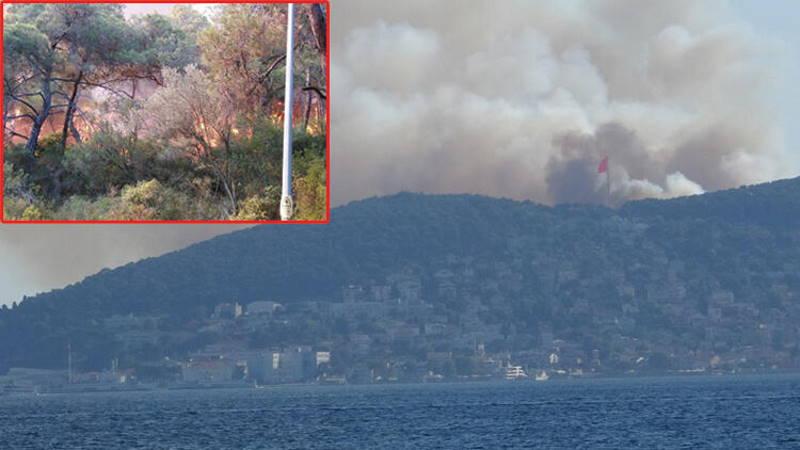 Пожар на острове Хейбелиада ликвидирован