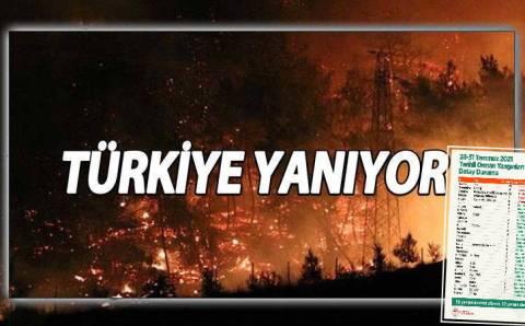Краткая сводка: Пожары затронули 30 провинций Турции
