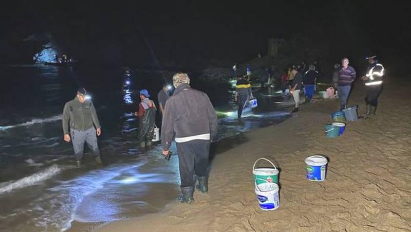 Зачем жителям Бартына ночью ведра на пляже?
