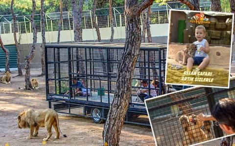 «Львиное сафари» в Анталье вызвало скандал, не успев открыться